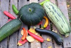 Höststilleben med utomhus- mogna grönsaker Arkivbild