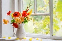 Höststilleben på fönsterbräda Arkivbilder