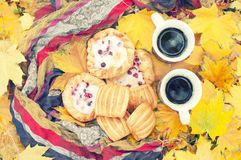 Höststilleben, två rånar med te i händer, kakor, picknick i höst parkerar Royaltyfria Foton