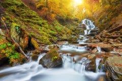 Höstström i skogen, europeiskt landskap för guld- höst royaltyfri fotografi