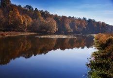 Höstträd längs en lugna flod Royaltyfri Foto