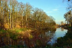 Höstträd reflekterade i vatten i en parkera Royaltyfria Bilder