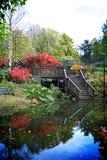 Höstträdgård Arkivbild