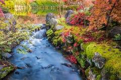 Höstträdgård med strömvatten och reflexionssjö på Eikando t arkivfoto