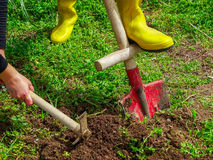 höstträdgårdleaves som krattar arbete Arkivfoto