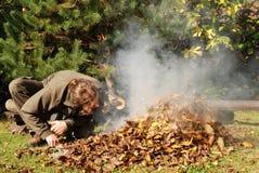 höstträdgårdworking Royaltyfri Fotografi