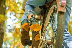 Höstträdsidor och vinragecykel Nedgångbegrepp Rida cykeln i parkera Aktivt folk utomhus enjoying royaltyfri foto