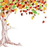 hösttree royaltyfri illustrationer