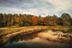 Hösttrees near floden Arkivbilder