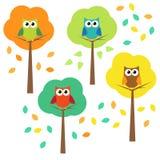 Hösttrees och owls Royaltyfri Foto