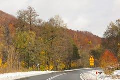 Höstväg. Fotografering för Bildbyråer