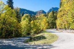 Höstväg i bergen av Abchazien Royaltyfri Fotografi