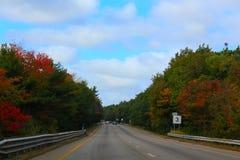 Höstväg, röda sidor Royaltyfri Fotografi
