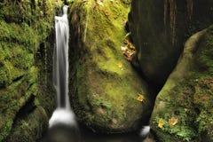 Höstvattenfall Arkivbild