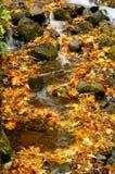 höstvattenfall royaltyfri fotografi