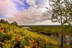 Höstvillkor i skogen Royaltyfria Bilder