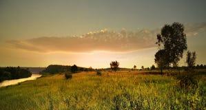 Höstvillkor i skogen Fotografering för Bildbyråer