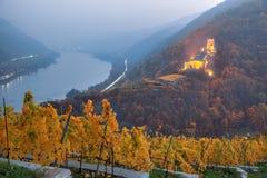 Höstvingård mot slott i Spitz med Danube River, Wachau, Österrike royaltyfri fotografi