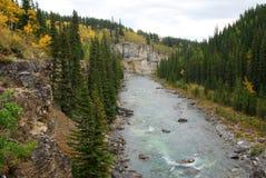 höstvinkelrör River Valley Arkivbild