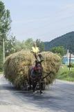 Hövagn i Rumänien royaltyfri foto