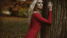Hübsche blonde Frau, die in einem herbstlichen Park aufwirft lizenzfreies stockfoto