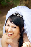Hübsche Braut Stockbild