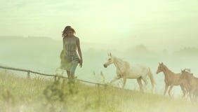 Hübsche Brunettedame, die unter Pferden stillsteht Stockfotos