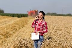 Hübsche Frau, die am Handy auf dem Weizengebiet spricht Stockbilder