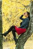 Hübsche Frau sitzt auf Baum im Herbstpark Stockfotos
