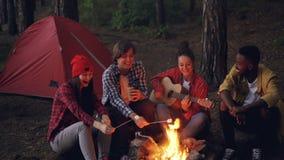 Hübsche Frau spielt die Gitarre, während ihre Freunde lustige Lieder singen und lachen, Eibisch auf Feuer kochend stock video