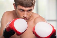 Hübsche muskulöse tragende Boxhandschuhe des jungen Mannes Stockfoto