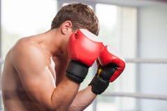 Hübsche muskulöse tragende Boxhandschuhe des jungen Mannes Stockfotos