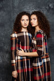 Hübsche Schwestern paart die Aufstellung, Kamera über grauem Hintergrund betrachtend Lizenzfreies Stockfoto