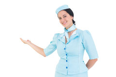 Hübsche Stewardess, die mit der Hand sich darstellt Stockfoto