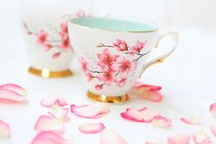 Hübsche Teecup und rosafarbene Blumenblätter Lizenzfreie Stockfotografie