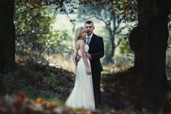 Hübscher Bräutigam, der blonde Braut im Wald bei Sonnenuntergang umarmt Stockfotos