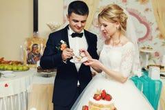 Hübscher Bräutigam der glücklichen Hochzeitspaare und blonde Braut, die del schnitzt Lizenzfreie Stockfotos