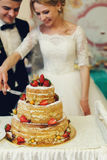 Hübscher Bräutigam der glücklichen Hochzeitspaare und blonde Braut, die del schnitzt Stockfotos