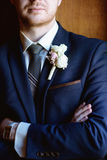 Hübscher Bräutigam in der Klage in der Halle Stockbild