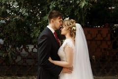 Hübscher Bräutigam, der schöne blonde Braut, Jungvermähltenpaar h küsst Stockfotos