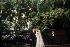 Hübscher Bräutigam, der schöne blonde Braut, Jungvermähltenpaar h küsst Lizenzfreies Stockfoto