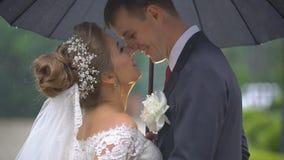 Hübscher Bräutigam mit Pfingstrose Boutonniere küsst seine hübsche Braut in der Backe bei der Stellung unter Regenschirm im Regen stock video
