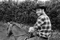Hübscher Cowboy, Pferdereiter auf Sattel, zu Pferde ADN-Stiefel lizenzfreie stockbilder