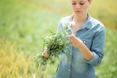 Hübscher Frauenlandwirt, der auf dem grünen Weizengebiet mit den Ohren von w steht stockfoto