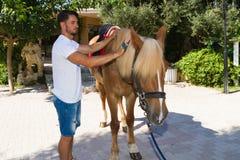 Hübscher junger Mann, der ein Pferd an den Ställen pflegt Lizenzfreie Stockfotografie