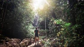 Hübscher junger stilvoller Mann im schwarzen T-Shirt und in der Sonnenbrille nimmt an Trekking im grünen Dschungel teil stockbild
