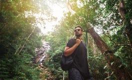 Hübscher junger stilvoller Mann im schwarzen T-Shirt und in der Sonnenbrille nimmt an Trekking im grünen Dschungel teil stockbilder