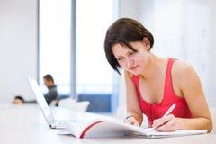 Hübscher, junger Student, der in der Bibliothek studiert Stockfotografie