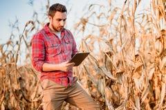 hübscher Landwirt, der Tablette für das Ernten von Ernten verwendet Landwirtschaftliche Maschinen und Technologie stockbilder