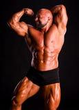Hübscher muskulöser Bodybuilder Stockfotografie